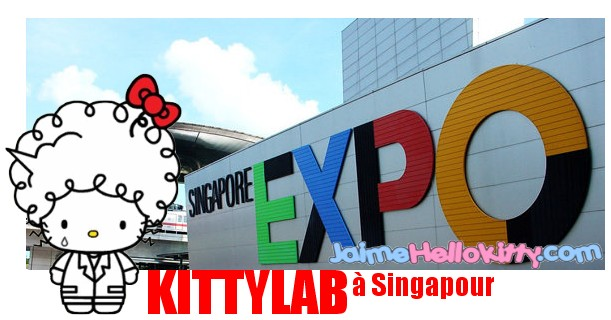 http://jaimehellokitty.cowblog.fr/images/Articles002/kittylabsg.jpg